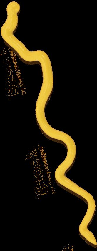 Plochman's Premium Yellow Mustard